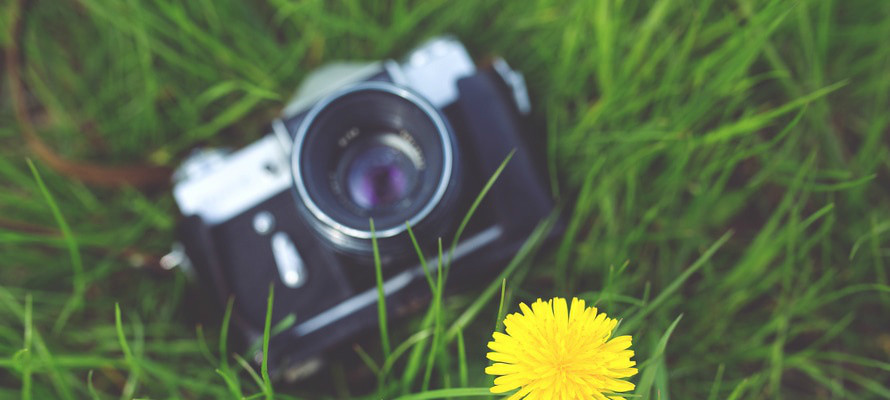 camera-photographer-yellow-photography-large